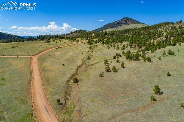 549 Penrose Circle, Cripple Creek, CO 80813 (#5075175) :: Tommy Daly Home Team