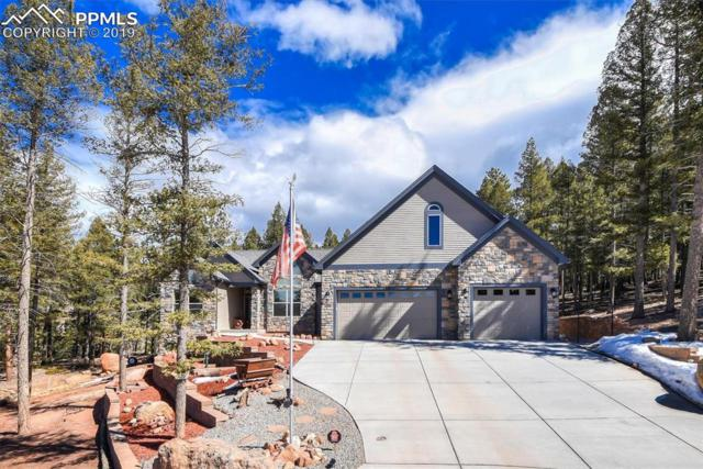 145 Cirrus Court, Woodland Park, CO 80863 (#5089258) :: Action Team Realty