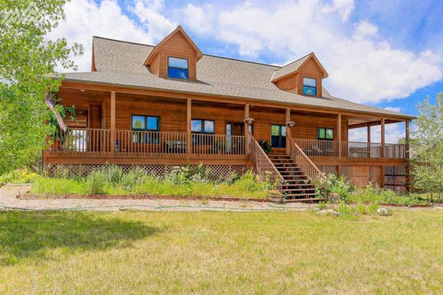 20572 Thunder Road, Colorado Springs, CO 80908 (#5141154) :: 8z Real Estate