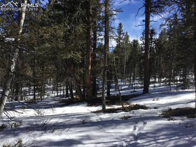 228 Chipeta Creek Trail, Florissant, CO 80816 (#5155068) :: Tommy Daly Home Team