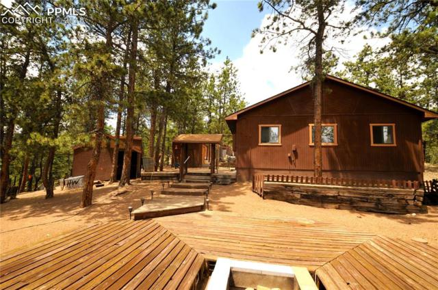 117 Rabbil Creek Trail, Florissant, CO 80816 (#5173048) :: Harling Real Estate