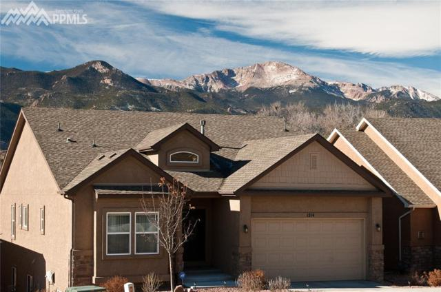 1214 Ethereal Circle, Colorado Springs, CO 80904 (#5183931) :: Action Team Realty