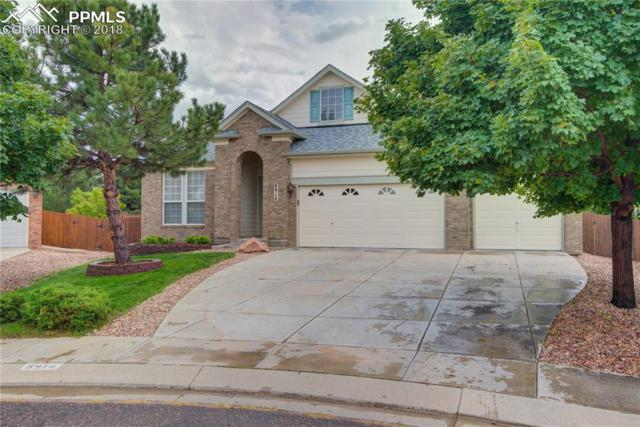 8914 Rockmont Terrace, Colorado Springs, CO 80920 (#5185495) :: The Treasure Davis Team