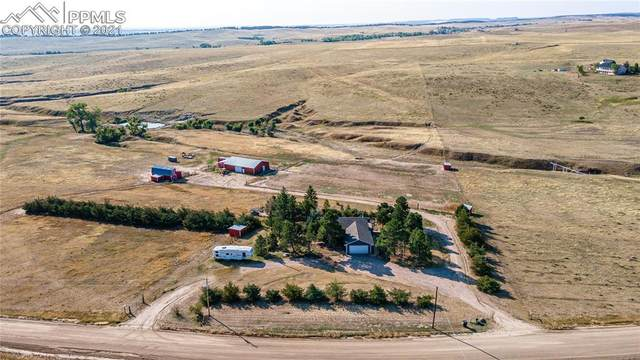 13988 Wilderness Drive, Kiowa, CO 80117 (#5198064) :: Springs Home Team @ Keller Williams Partners