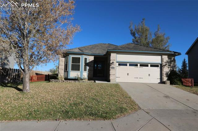 4175 Danceglen Drive, Colorado Springs, CO 80906 (#5203741) :: 8z Real Estate