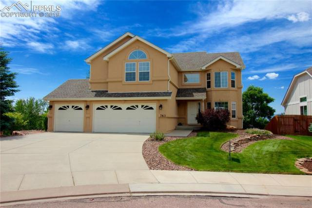 763 Fox Run Circle, Colorado Springs, CO 80921 (#5204270) :: Perfect Properties powered by HomeTrackR