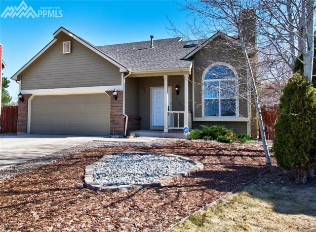 4735 Cove Court, Colorado Springs, CO 80920 (#5211654) :: Action Team Realty