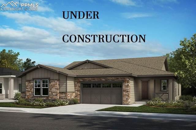 549 Garden Sage Court, Castle Rock, CO 80104 (#5214346) :: Finch & Gable Real Estate Co.