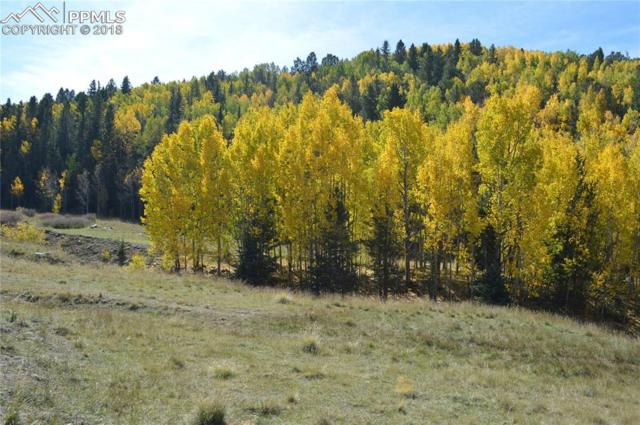 00 Monarch Drive, Cripple Creek, CO 80813 (#5223105) :: Venterra Real Estate LLC