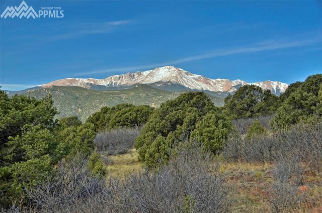 3650 Outback Vista Point, Colorado Springs, CO 80904 (#5252644) :: The Treasure Davis Team