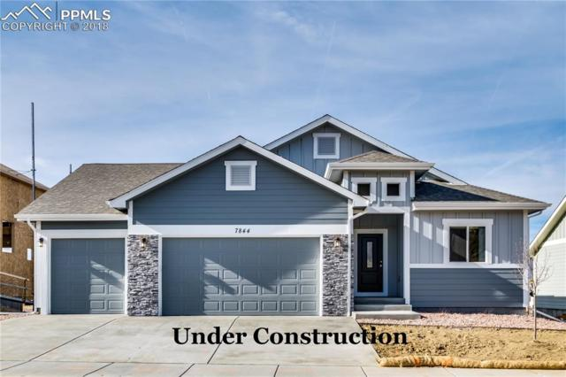 7793 Pinfeather Drive, Fountain, CO 80817 (#5277714) :: Jason Daniels & Associates at RE/MAX Millennium