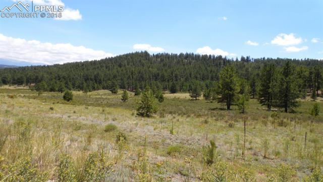 418 Langnis Road, Guffey, CO 80820 (#5321946) :: Action Team Realty