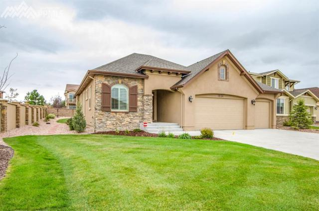 9104 Argentine Pass Trail, Colorado Springs, CO 80924 (#5329323) :: Jason Daniels & Associates at RE/MAX Millennium