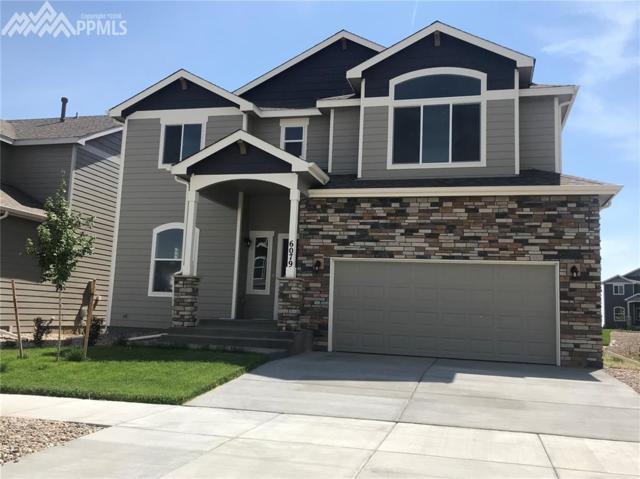 6079 Jorie Road, Colorado Springs, CO 80927 (#5356928) :: Fisk Team, RE/MAX Properties, Inc.