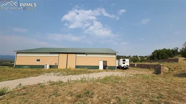 7825 Soda Creek Road, Pueblo, CO 81005 (#5368548) :: 8z Real Estate