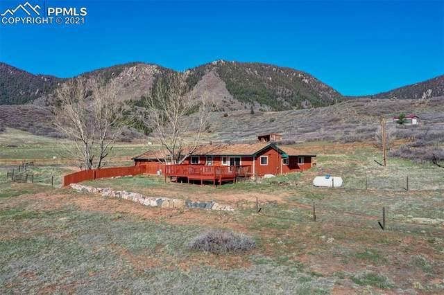 4190 Hay Creek Road, Colorado Springs, CO 80921 (#5395071) :: The Daniels Team
