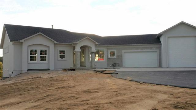 17475 W Cherry Stage Drive, Colorado Springs, CO 80921 (#5400255) :: 8z Real Estate
