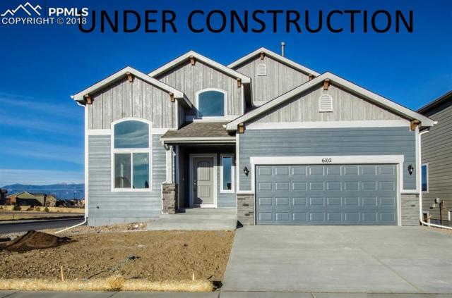 9755 Rubicon Drive, Colorado Springs, CO 80925 (#5427272) :: The Kibler Group