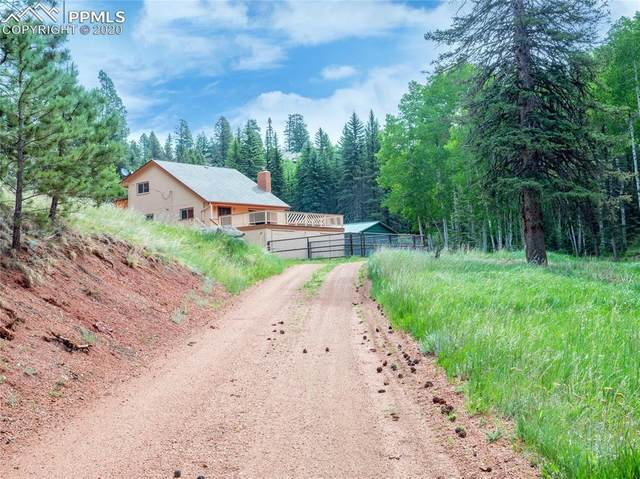 370 Beaver Creek Circle, Florissant, CO 80816 (#5433669) :: CC Signature Group