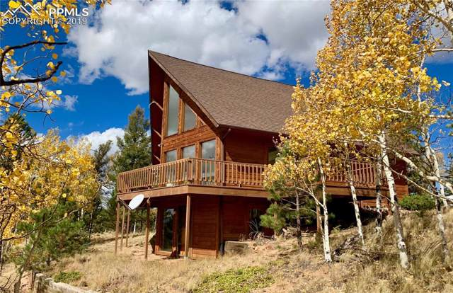 175 Needle Creek Road, Divide, CO 80814 (#5485768) :: CC Signature Group
