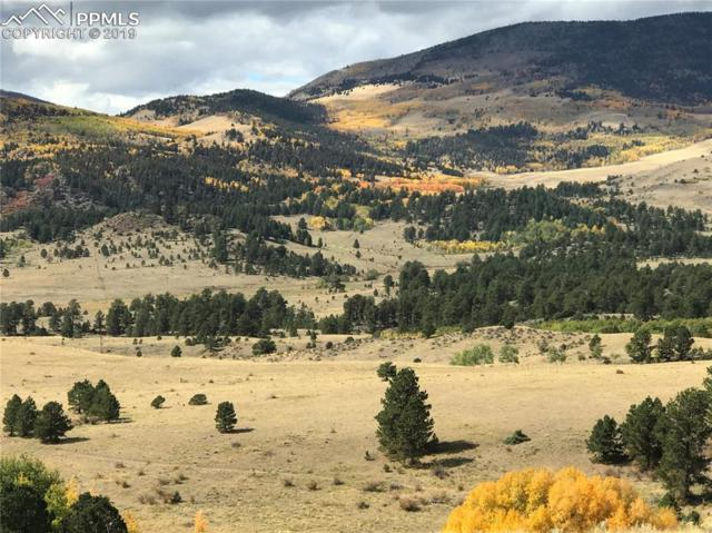 1282 County 169 Road, Cotopaxi, CO 81223 (#5512126) :: Jason Daniels & Associates at RE/MAX Millennium