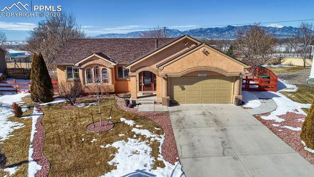 10350 Buck Rake Court, Fountain, CO 80817 (#5521924) :: Jason Daniels & Associates at RE/MAX Millennium