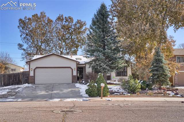 295 Fleming Street, Colorado Springs, CO 80911 (#5544550) :: Tommy Daly Home Team