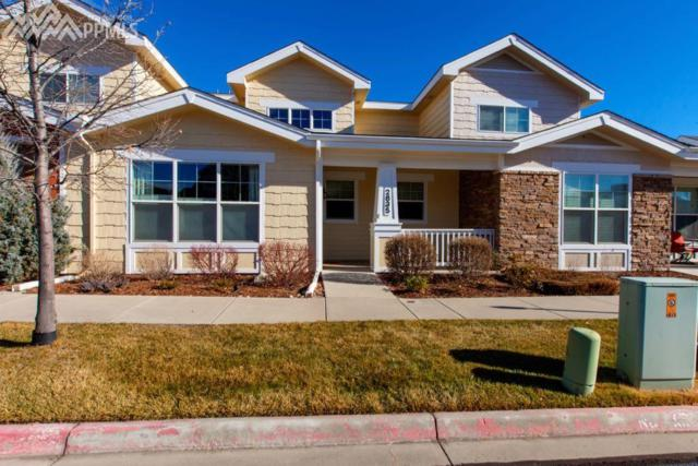 2835 Elm Meadow View, Colorado Springs, CO 80907 (#5568653) :: Group 46:10 Colorado Springs