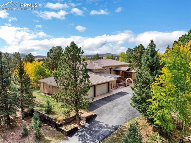 101 Suncrest Place, Divide, CO 80814 (#5570897) :: The Daniels Team