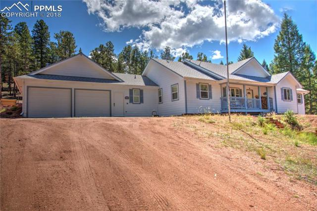 16 Spruce Circle, Woodland Park, CO 80863 (#5571393) :: Action Team Realty