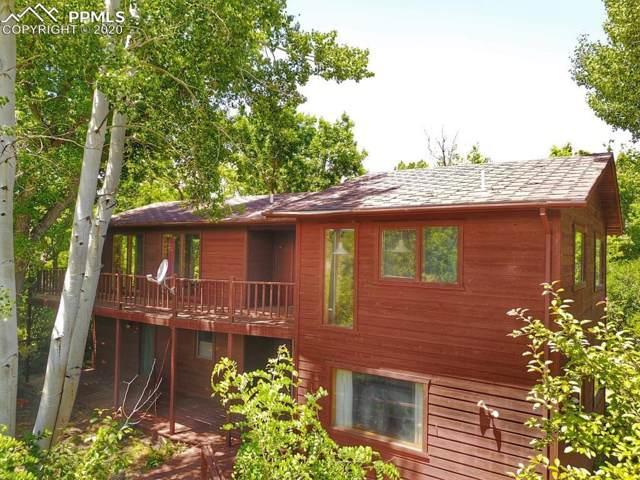 161 County Road 359, La Veta, CO 81055 (#5573546) :: The Scott Futa Home Team