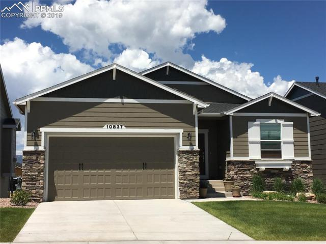 10837 Hidden Brook Circle, Colorado Springs, CO 80908 (#5575946) :: CC Signature Group