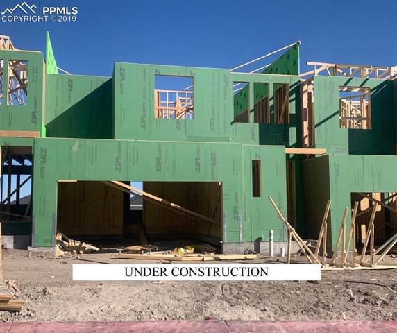 10015 Poppy Mallow Point, Colorado Springs, CO 80924 (#5592427) :: 8z Real Estate