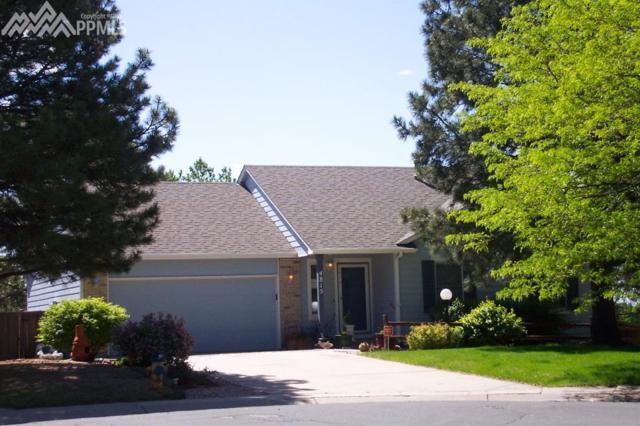 4815 Halter Court, Colorado Springs, CO 80922 (#5628123) :: 8z Real Estate