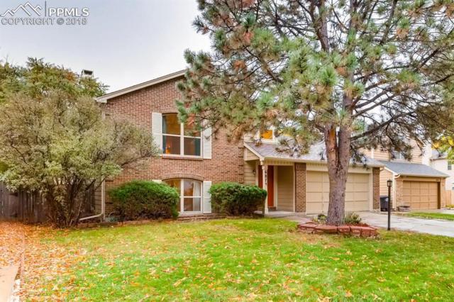 6875 Holt Drive, Colorado Springs, CO 80922 (#5647961) :: 8z Real Estate