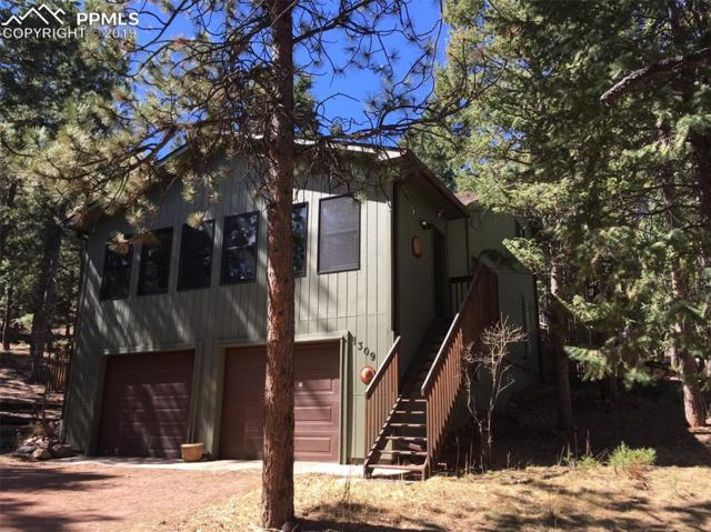 1309 W Browning Avenue, Woodland Park, CO 80863 (#5681628) :: Venterra Real Estate LLC