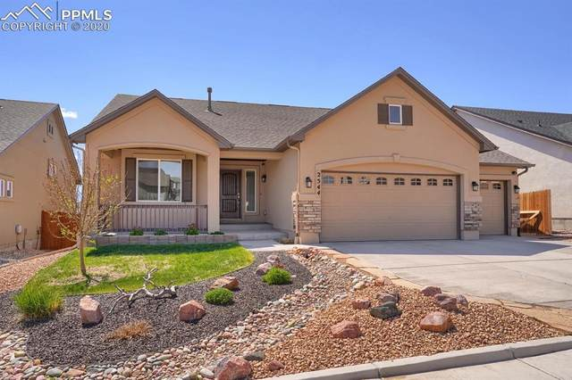 2544 Equine Court, Colorado Springs, CO 80922 (#5699377) :: Tommy Daly Home Team