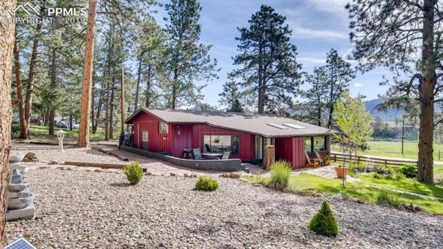 10205 County 11 Road, Florissant, CO 80816 (#5704607) :: 8z Real Estate