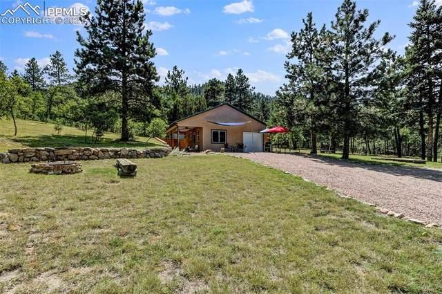 620 Adobe Creek Road, Wetmore, CO 81253 (#5708954) :: 8z Real Estate