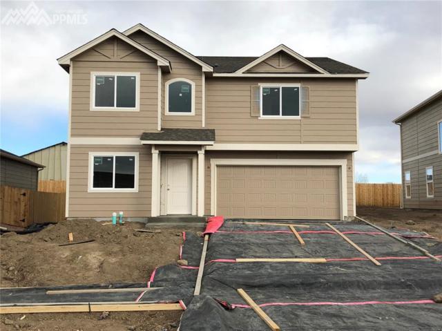 7348 Cat Tail Creek, Colorado Springs, CO 80923 (#5715457) :: 8z Real Estate
