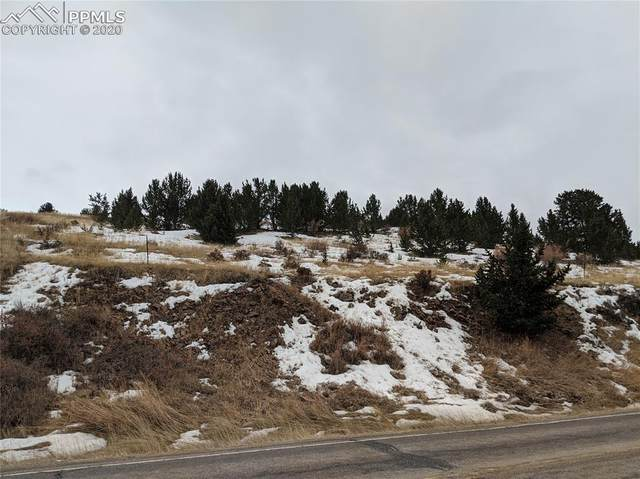 67 Highway 67 Highway, Cripple Creek, CO 80813 (#5719401) :: Action Team Realty