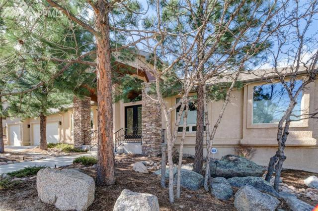 390 Paisley Drive, Colorado Springs, CO 80906 (#5721806) :: Harling Real Estate