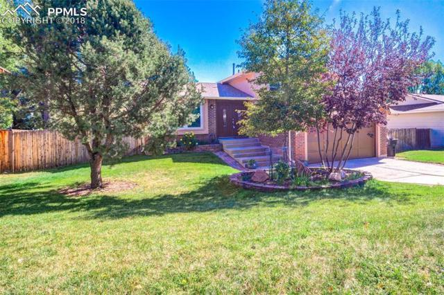 5315 Meadowgreen Drive, Colorado Springs, CO 80919 (#5729324) :: The Treasure Davis Team