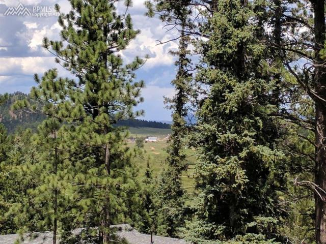 225 Iron Eagle Point, Woodland Park, CO 80863 (#5736480) :: 8z Real Estate