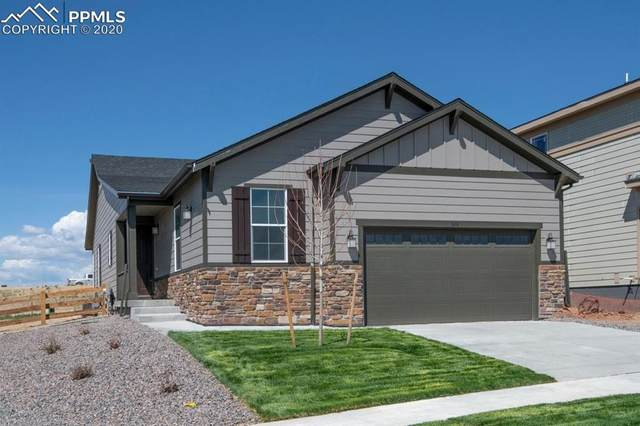 1674 Stable View Drive, Castle Pines, CO 80108 (#5738717) :: 8z Real Estate