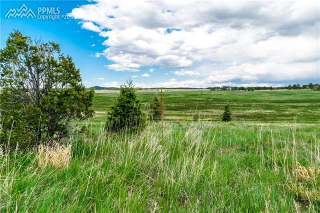 18561 Cherry Springs Ranch Drive, Monument, CO 80132 (#5753657) :: 8z Real Estate