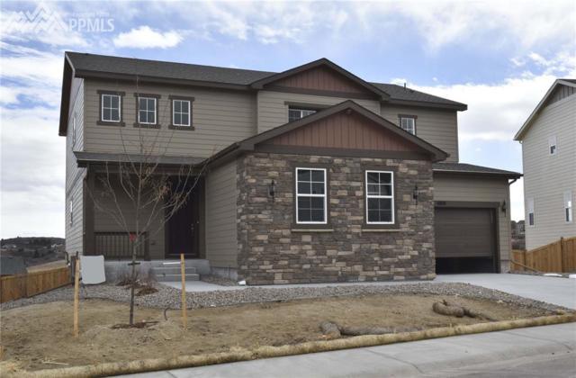 4000 Spanish Oaks Court, Castle Rock, CO 80108 (#5766720) :: 8z Real Estate