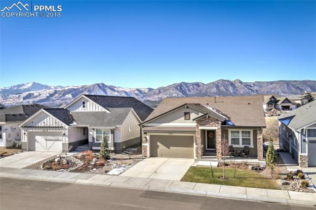 11523 Spectacular Bid Circle, Colorado Springs, CO 80921 (#5800640) :: The Treasure Davis Team