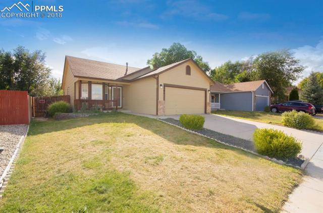 5181 Fennel Drive, Colorado Springs, CO 80911 (#5800754) :: CC Signature Group
