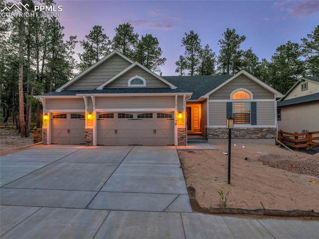1556 Catnap Lane, Monument, CO 80132 (#5810616) :: Tommy Daly Home Team